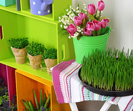 12 Beautiful Flower Garden Pictures Neat And Cozy Home Ideas